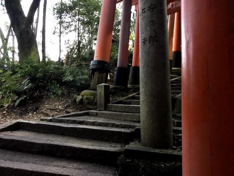 伏見稲荷大社の千本鳥居の頂上へ