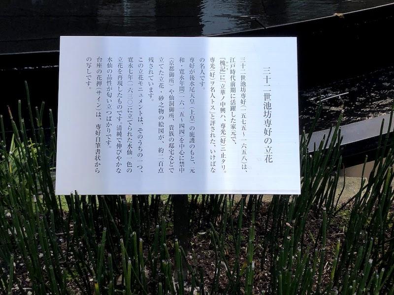 六角堂の「三十二世池坊専好」の立花の解説