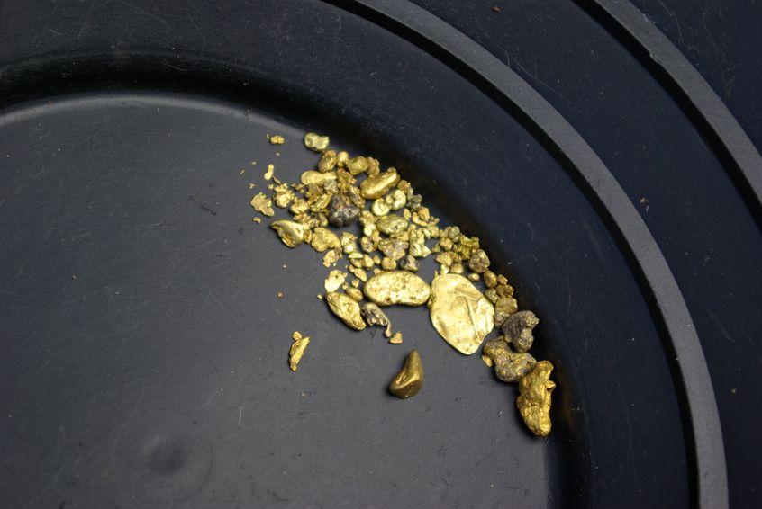 砂金採りで、「砂」どころじゃない金が採れたことがあるというトリビア