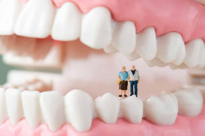 歯の雑学まとめ
