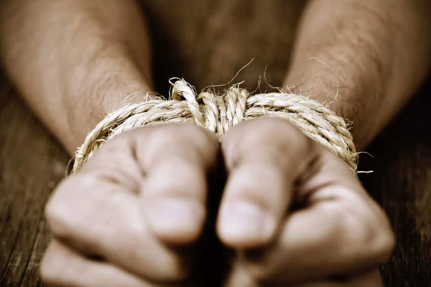 「縄で縛られた海賊の親分を助ける」がコンセプトというトリビア