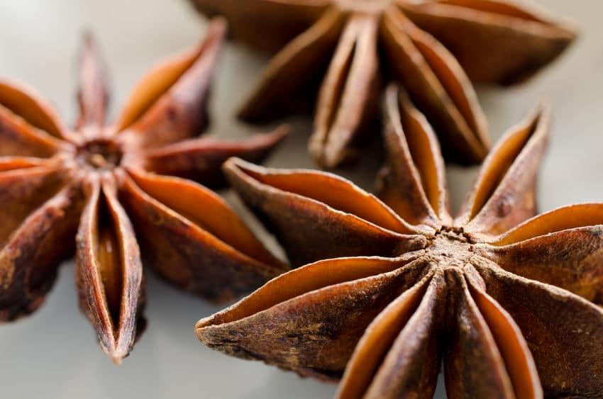 タミフルの原料は中国の香辛料「八角」についてのトリビア