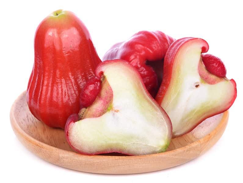 「フトモモ」という果実があるという雑学