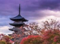 日本一番高い木造建築は、京都・東寺の「五重塔」という雑学