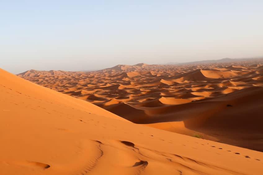 サハラ砂漠の「サハラ」は砂漠という意味という雑学