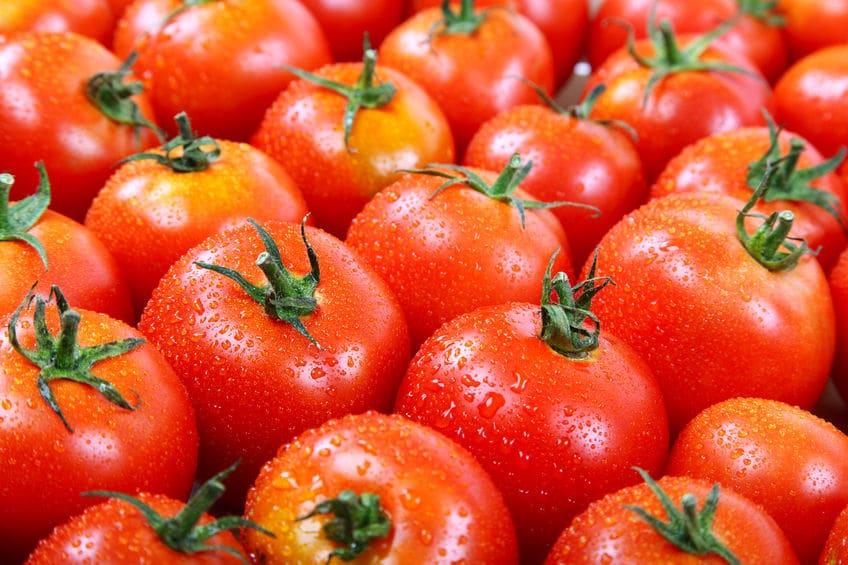トマトのあるなしで風味がかなり異なる「別物」についてのトリビア
