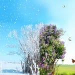 世界の最高・最低気温と日本の最高・最低気温に関する雑学