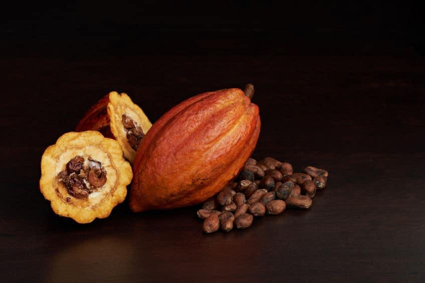 チョコレートの苦さはカカオ含有量で決まるというトリビア