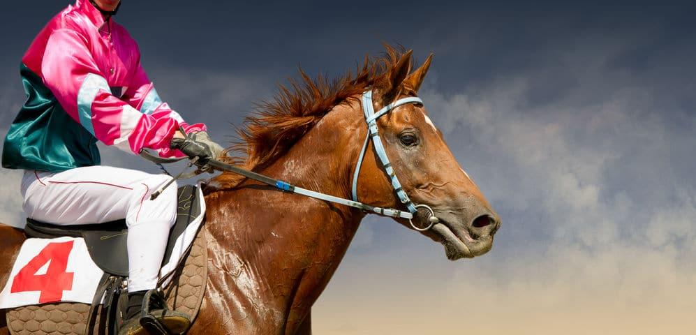 世界各地の競馬文化に関する雑学