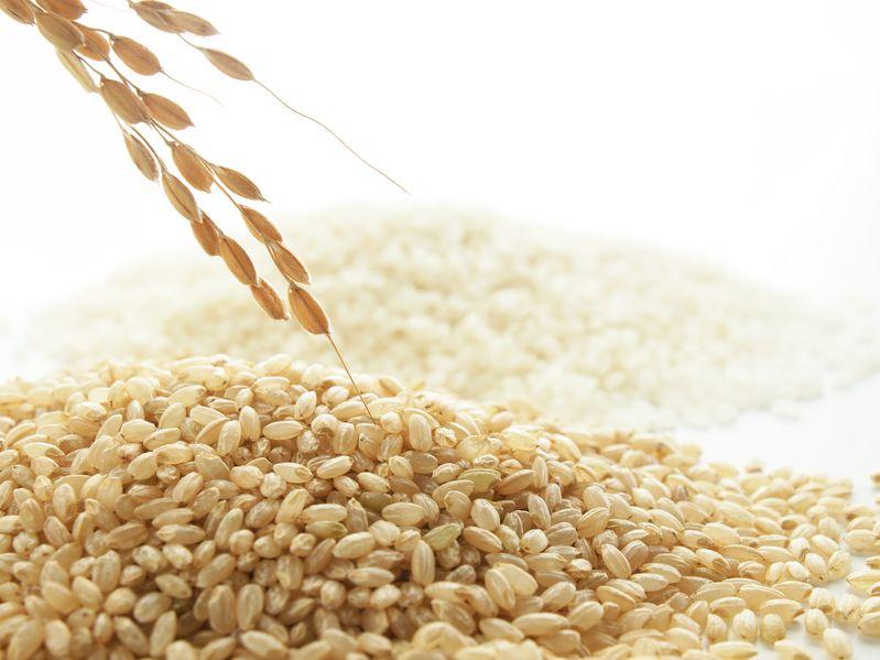 江戸時代のお米の値段に関する雑学