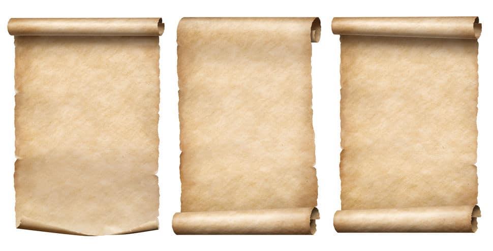コアラのフンから紙をつくることができるという雑学