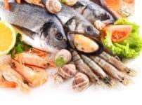 魚と貝の雑学まとめ