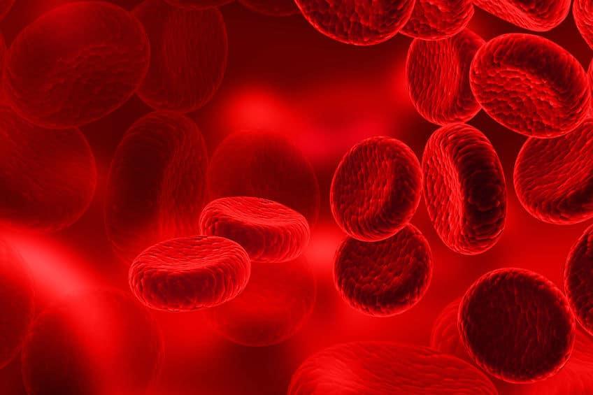 血液が赤いのは鉄サビの色についてのトリビア