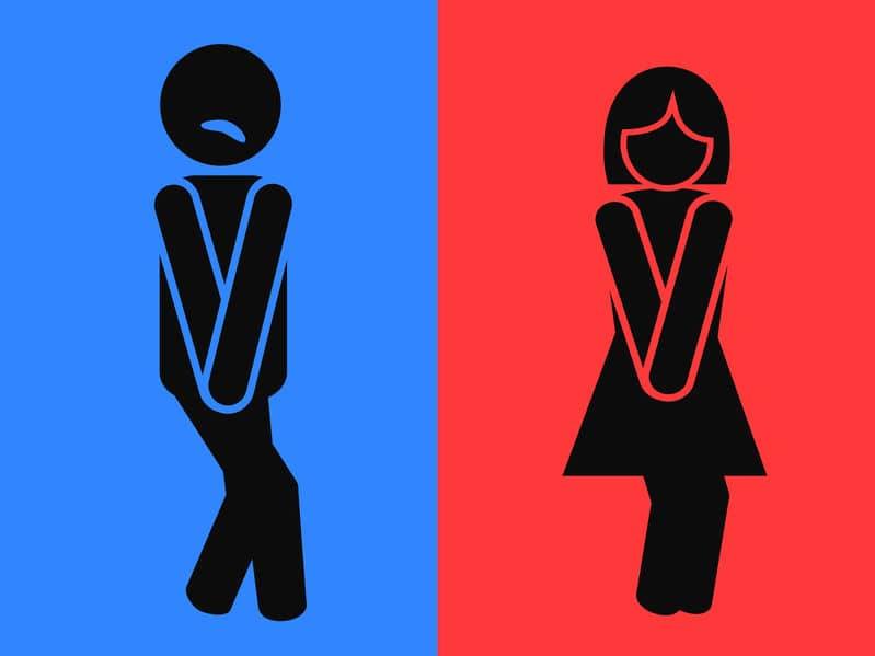 「本屋でトイレ」は男女共通。その原因についてのトリビア
