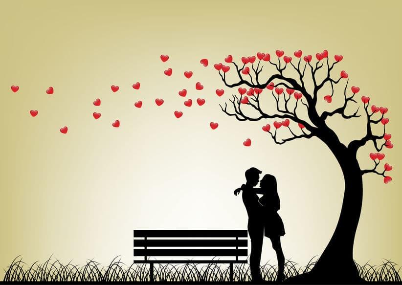 せましの恋愛エピソードも…についてのトリビア