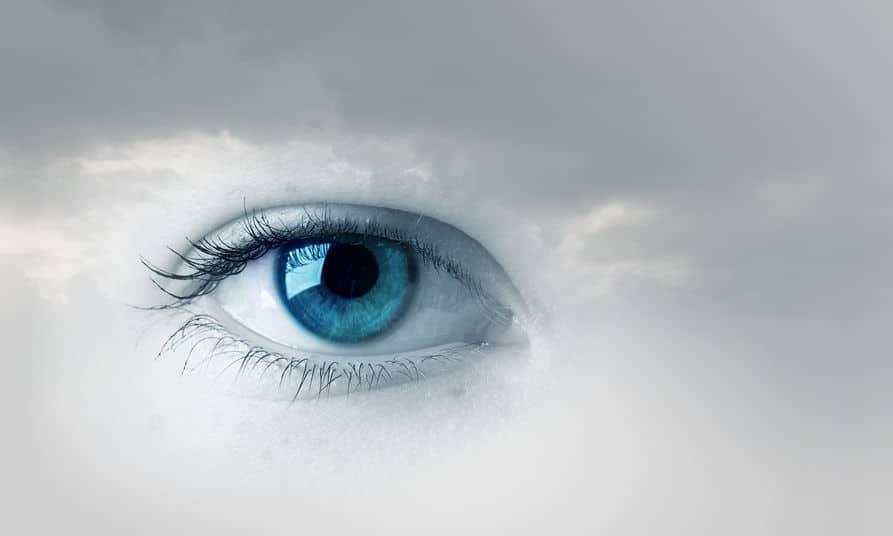 目と脳による錯視「トロクスラー消失」についてのトリビア