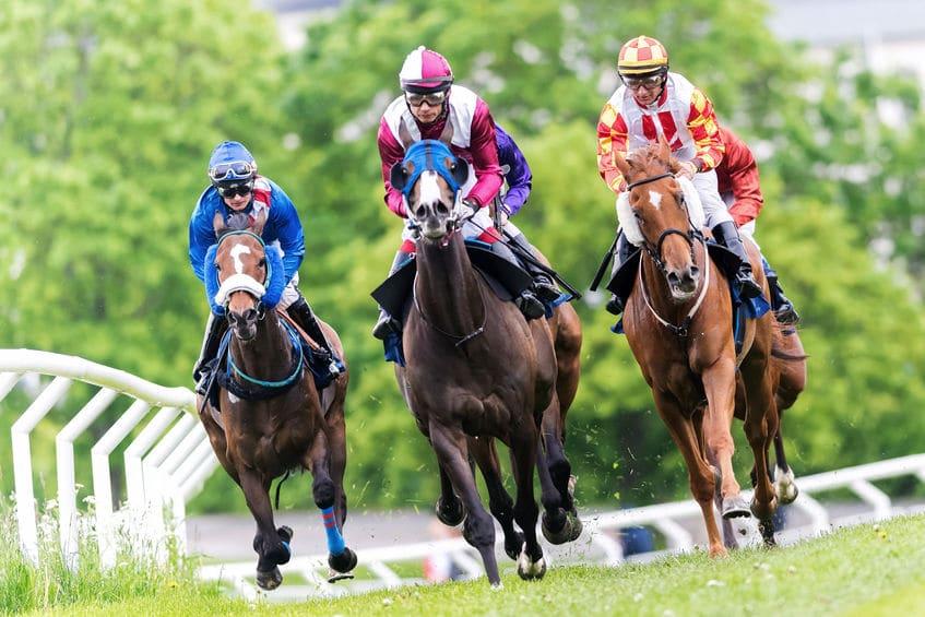 変わった名前の競走馬に関する雑学