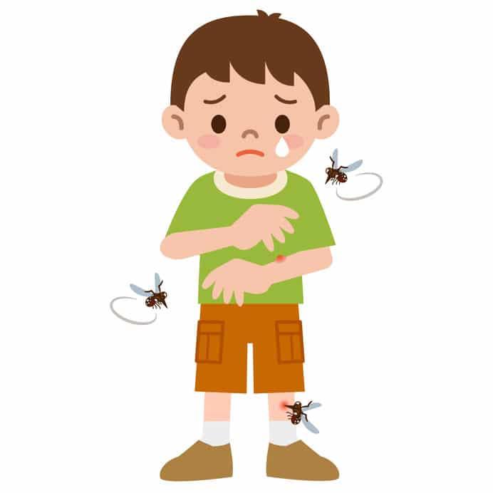 生類憐みの令においての蚊に関する雑学