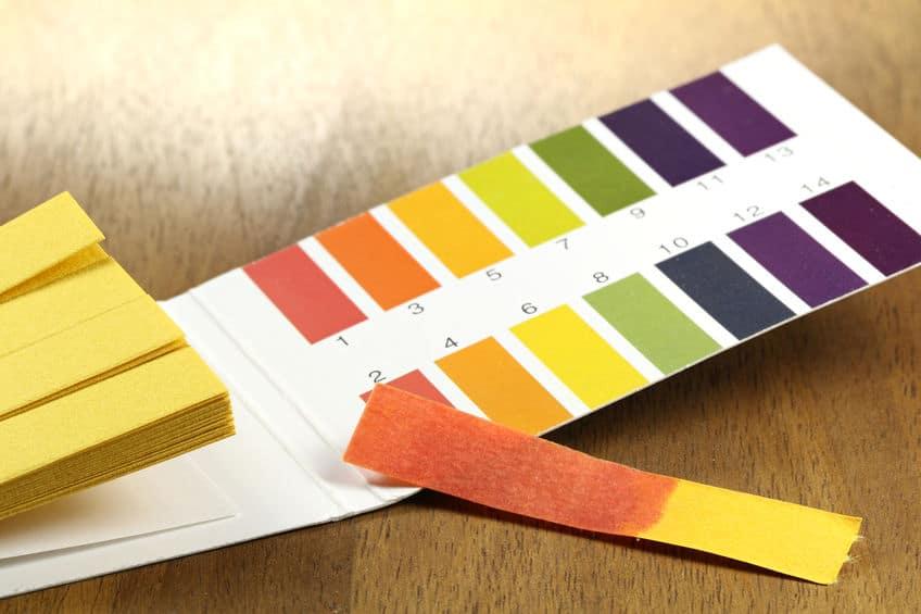 アジサイの色は植えている場所によって変わるという雑学
