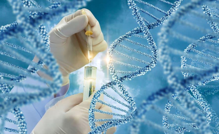 DNA鑑定の相場についてのトリビア