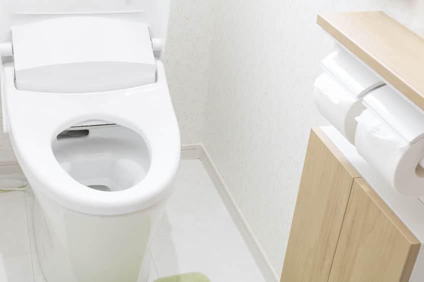 信玄の水洗トイレにまつわる雑学まとめ