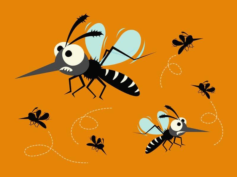 蚊の習性を利用しようというトリビア